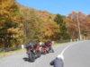 【バイク】人気アメブロガーが選ぶ・おすすめ『くねくね道』ベスト5【走って楽しい】