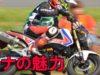 【イラストレーター】もっとバイクがうまくなる&楽しくなるジムカーナの魅力・ベスト3【寺崎愛さん】